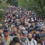 6236051-migration